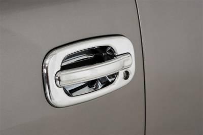 Chrome Door Handles