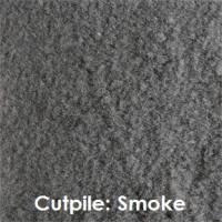 Pathfinder Replacement Carpeting - Image 3