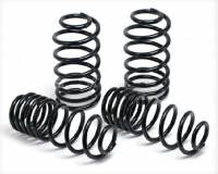 Lowering Components - Pathfinder - Pathfinder Lowering Coils 2WD